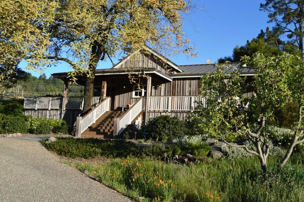 Dragonsleaf Vineyard in Sonoma Valley